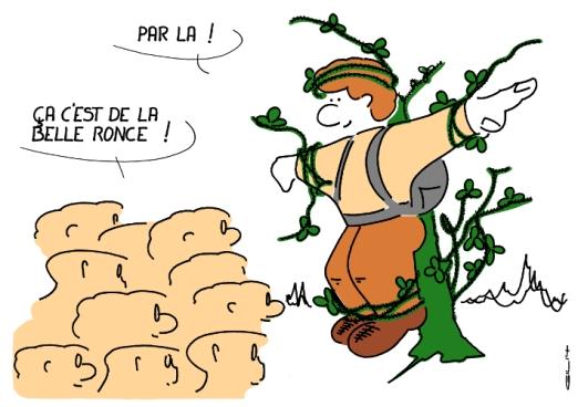 3588_la belle ronce_100