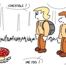 champignons sur https://gilscow.wordpress.com/2014/08/26/champignon-mushroom/