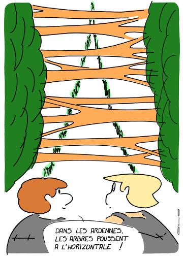 arbres horizontaux sur https://gilscow.wordpress.com/2015/03/02/horizontal/