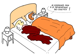 - I understand nothing of duvet mathematics ! https://gilscow.wordpress.com/2015/08/08/la-mathematique-des-couettes-duvet-mathematics/
