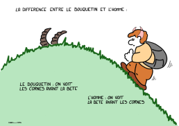 The difference between ibex and man : Ibex : one sees the horns prior to the beast Man : one sees the beast prior to the horns https://gilscow.wordpress.com/2016/06/24/lhomme-et-le-bouquetin-the-man-and-the-ibex/