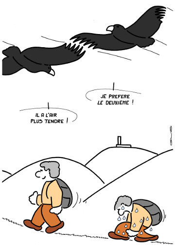 4641_vautours_100