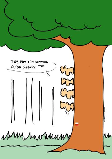 4702_arbre00