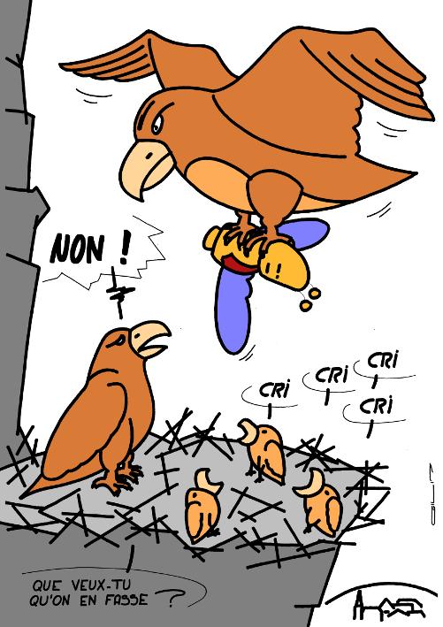 5075_nid d aigles_100