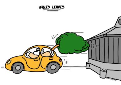 GILLES PART https://gilscow.wordpress.com/2018/03/02/un-arbre-propre-a-tree-clean/