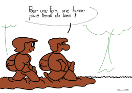 5541_bonne pluie_100
