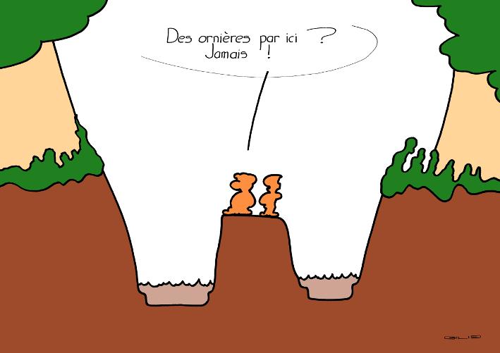 5752_ornieres_100