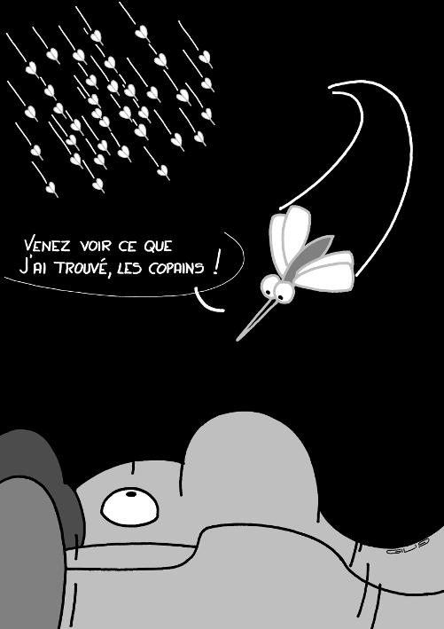 5802_moustiques_100