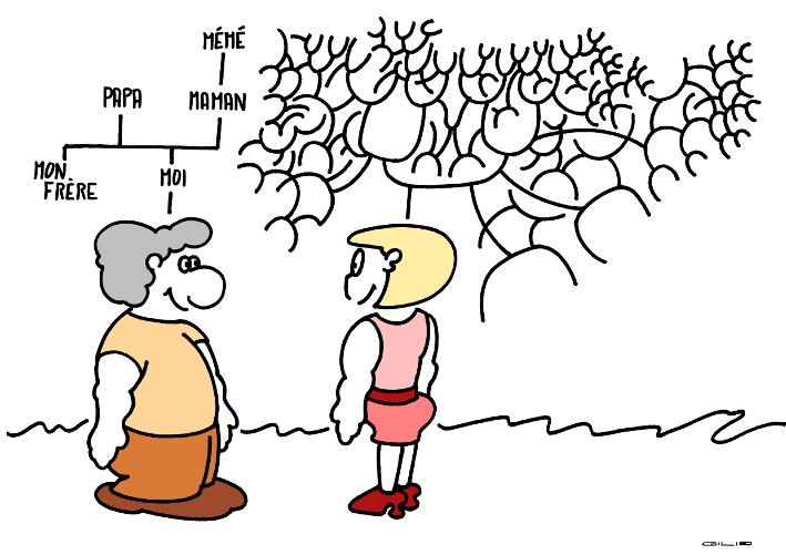 5843_arbre genealogique_100