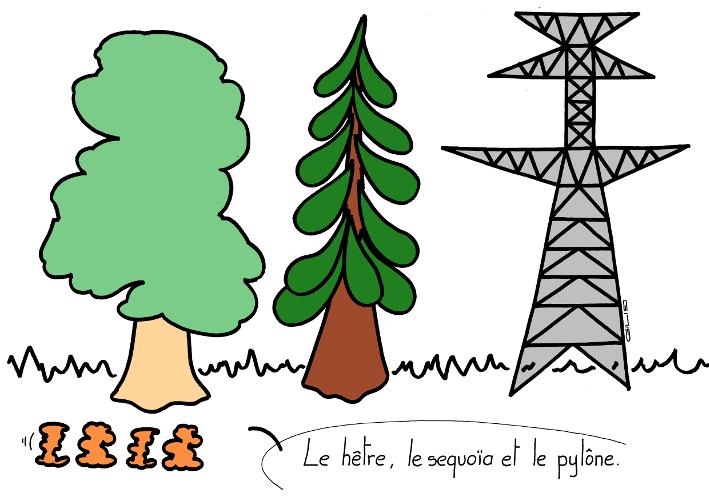 5922_hetre sequoia pylone_100