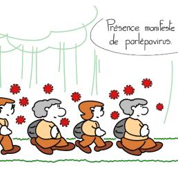 6020_parlepavirus_100