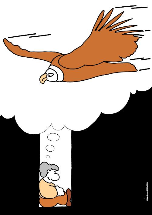 6048_vautour_100